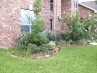 League City, Texas, Landcaping Before, Retaining Wall